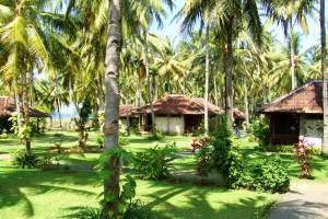 www.ijenvolcanotour.com ketapang indah hotel a